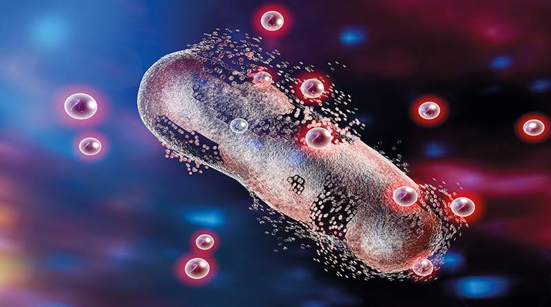 Киборг-бактерия
